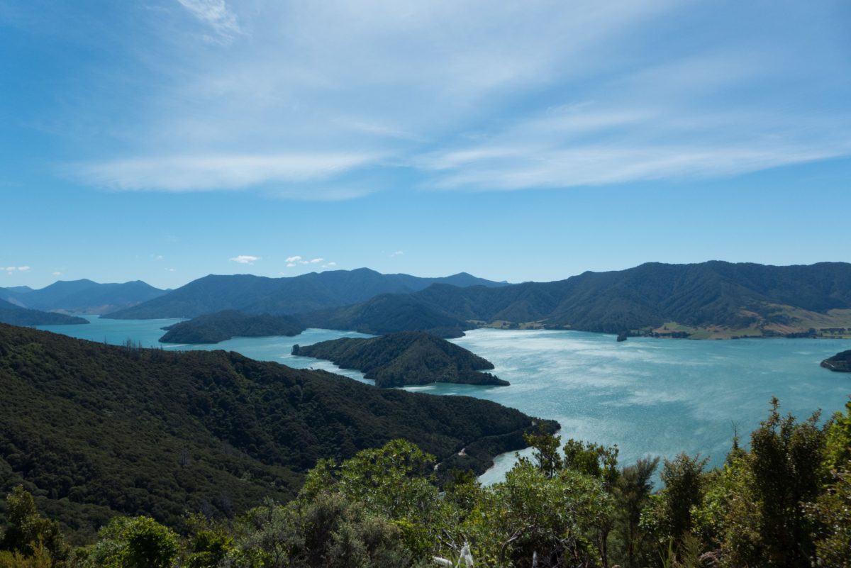 Hiking & Sailing in the Marlborough Sounds