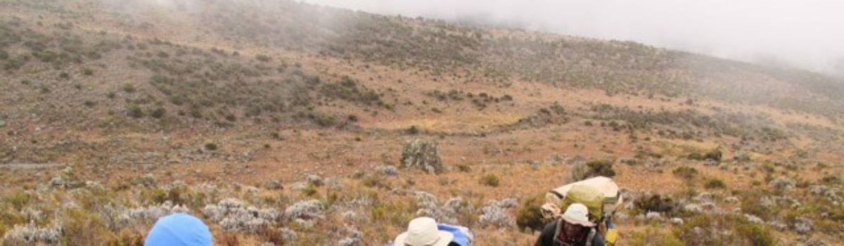 Day 4 on Kilimanjaro