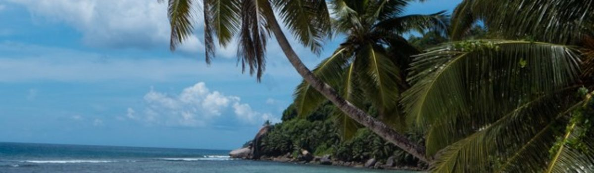 Bonzour from the Seychelles